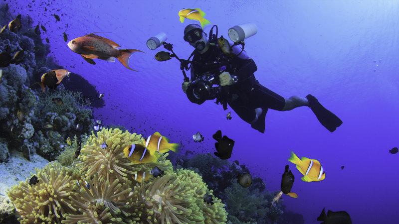 Mauritius-diver