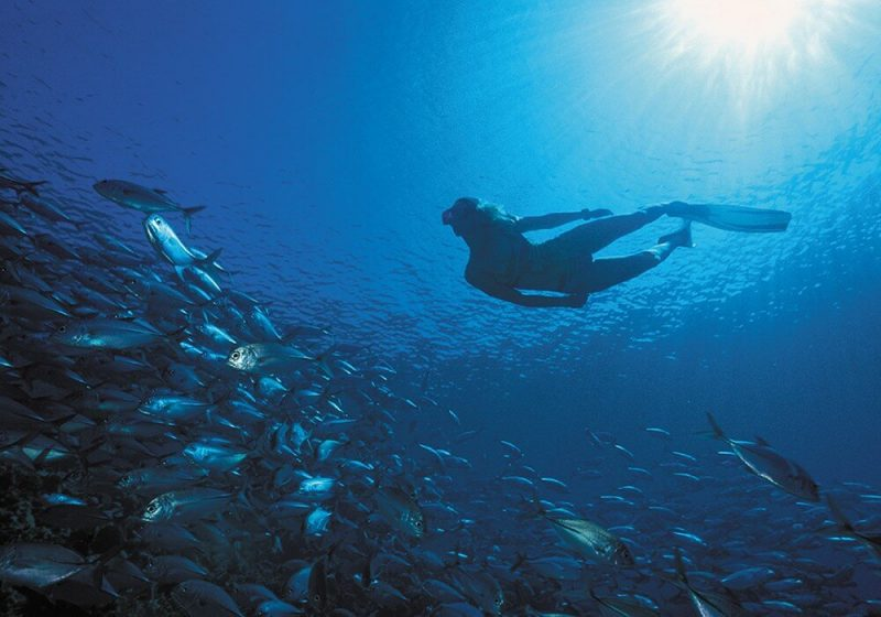 freediving-mauritius-bel-ombre