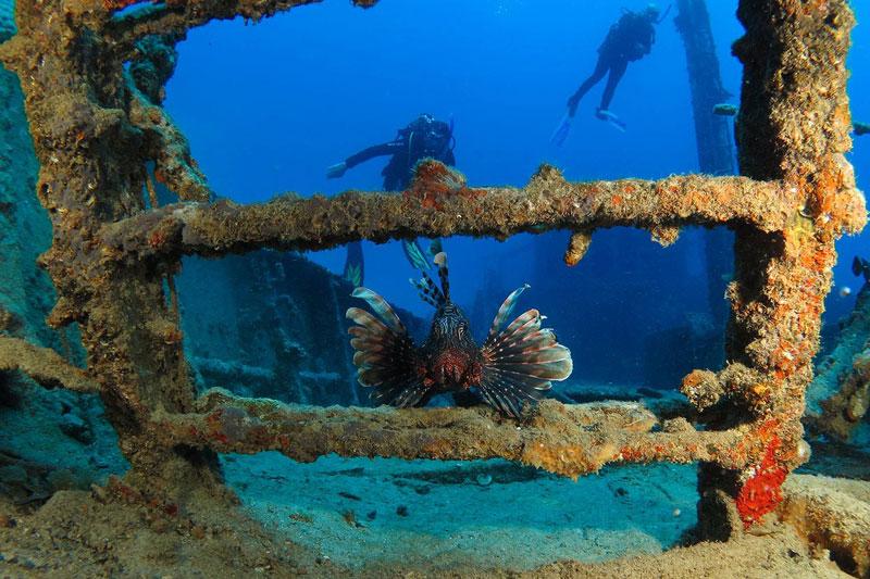 diving-mauritius