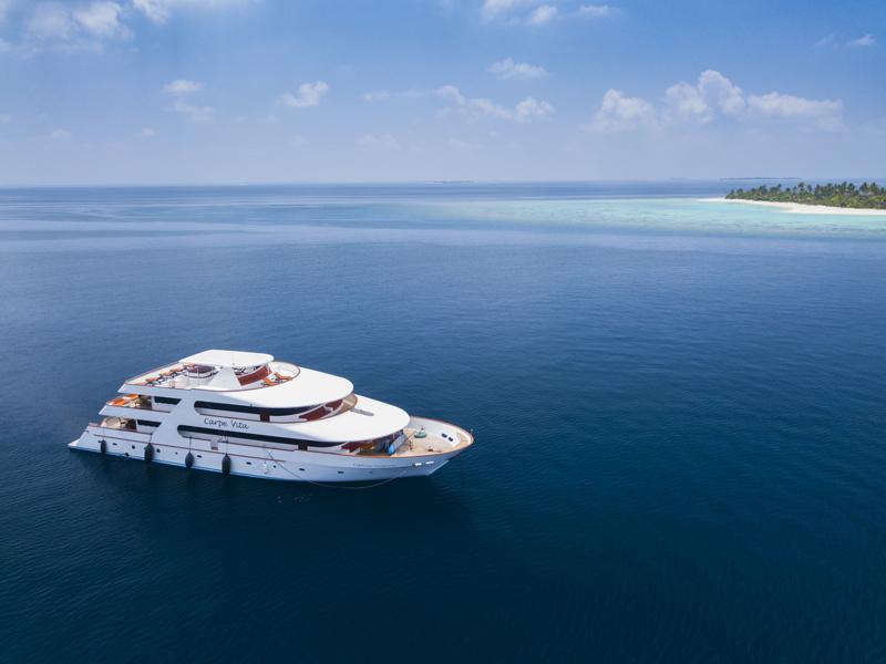 Carpe-Diem-Cruise