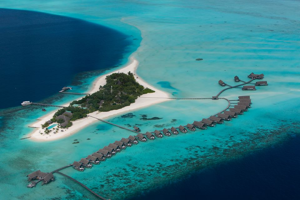 Hotels in maldives  : Cocoa Island