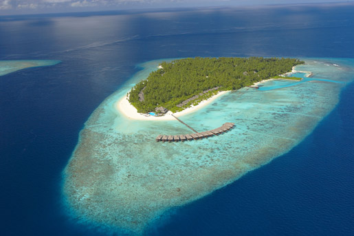 Hotels in maldives  : Filitheyo Island Resort