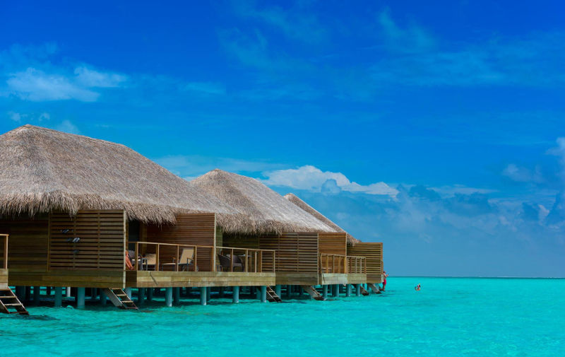 Hotels in maldives  : Cocoon Maldives