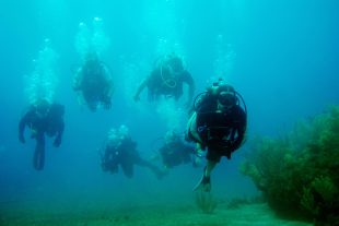 diving-holiday