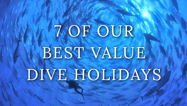 dive-holidays-best-value