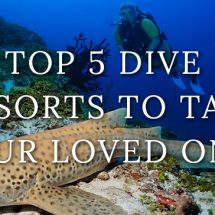 dive-resorts