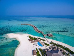 cocoon-maldives-island