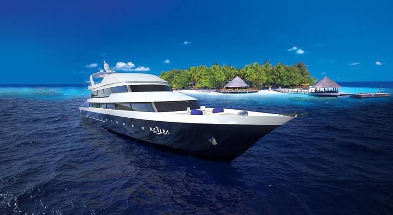 maldives-azalea