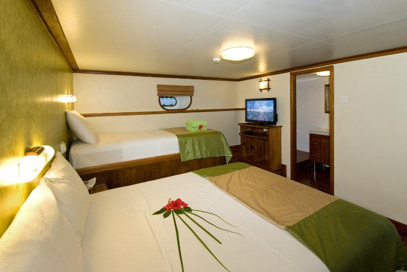 standard-cabin-Carpe-Vita