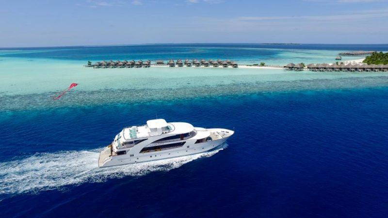 Carpe-novo-maldives