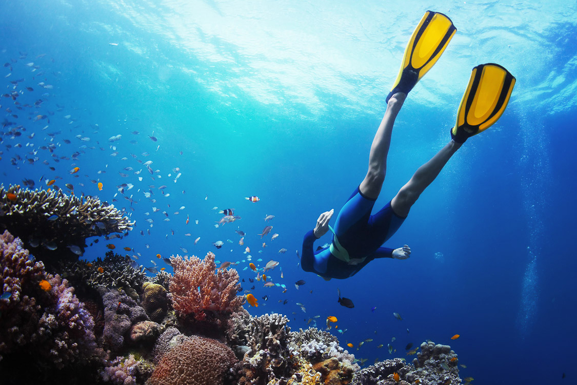 diving-resorts