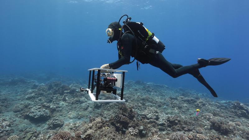 Liveaboard-Oceanography